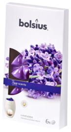 Bolsius - True Scents (waxmelts) Lavendel 6  stuks