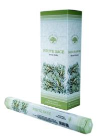 Green Tree - Wierook White Sage Wierookstokjes 20 stuks