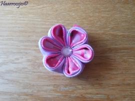 Lintbloem, roze, met lila en roze met lichtroze kersen bloem.