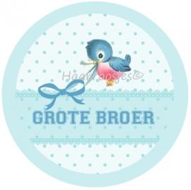 Grote broer (vogeltje)