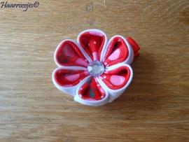 Lintbloem, rood, met wit en rood met roze kersen bloem.