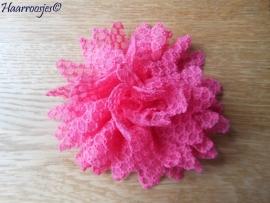 Haarbloem, fuchsia roze met wavelstructuur.