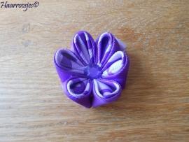 Lintbloem, lila, met paars en paars/lila bloem.