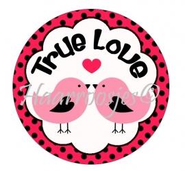 True love 002