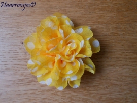 Haarbloem, geel met witte polkadots.