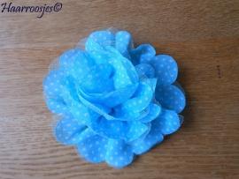 Haarbloem, groot (10 cm)