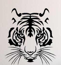 Jongensshirt, lange mouw, met tijger, past bij Z8.