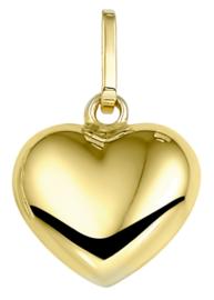gouden bedel(hanger) Hartje groot