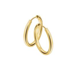Gouden klapcreolen 4001291