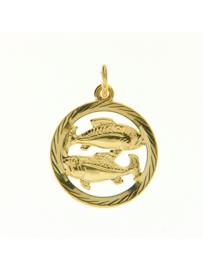 """gouden bedel(hanger) """"Vissen"""""""