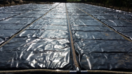 eb & vloed systeem pakket 30 x 60 mtr. bak