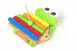 Muziekinstrument houten xylofoon kikker {L7565/W1/5}