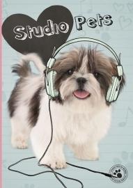 Studio Pets Schrift A4 ruit 14-15  *2/3*