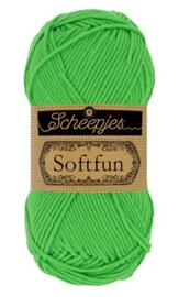 Scheepjes Softfun 2517