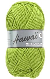 Hawaï 346