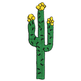 Applicatie Cactus