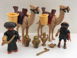 Egyptische grafrovers met kamelen