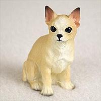 miniatuur Chihuahua tan-wit