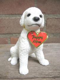 beeldje Poedel puppy wit