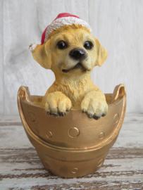 beeldje Labrador blond met kerstmuts