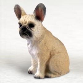 miniatuur Franse Bulldog beige