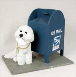Bichon Frise bij brievenbus