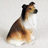 miniatuur Schotse Collie sable
