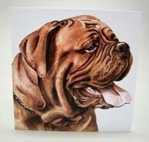 wenskaart Bordeaux Dog