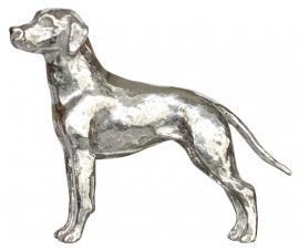 miniatuur Rhodesian Ridgeback
