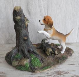 beeldje Beagle met wasbeer