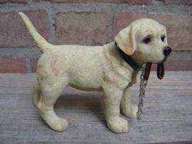 beeldje Labrador blond met riem staand