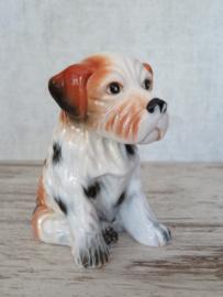 Terrierpup vintage