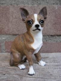 beeldje Chihuahua brindle