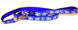 riem en halsband Maltezer blauw