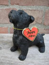 beeldje Schotse Terriër puppy
