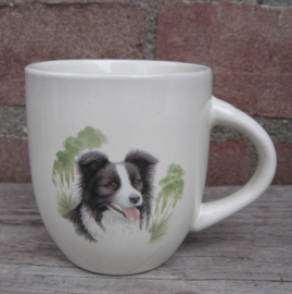 senseomok Border Collie