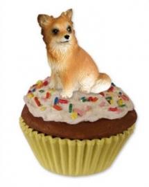 pupcake Chihuahua langhaar
