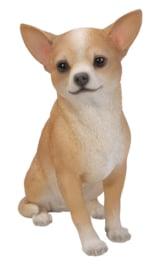 beeld Chihuahua tan-wit | 23 cm