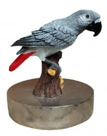 zilvertinnen urn Grijze Roodstaartpapegaai