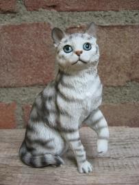 Kattenbeeldje/poezenbeeldje zilver tabby zittend