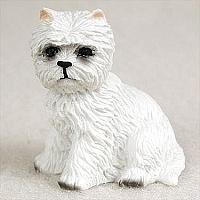 miniatuur West Highland White Terriër