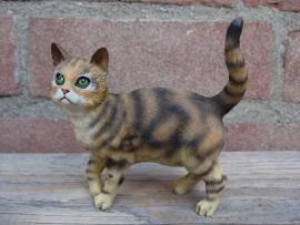 Kattenbeeldje/poezenbeeldje bruin tabby staand