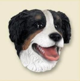 koelkastmagneet Berner Sennenhond