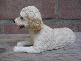 beeldje Labradoodle blond