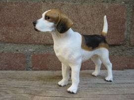 beeldje Beagle