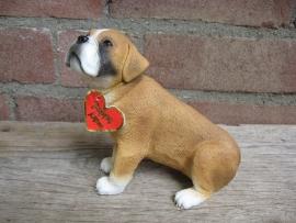 beeldje Boxer pup
