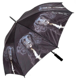 paraplu Engelse Cocker spaniel