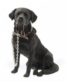 beeldje Labrador zwart met riem