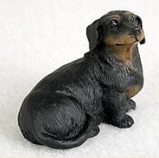 miniatuur Teckel black & tan korthaar