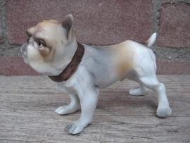 beeldje Engelse Bulldogpup vintage